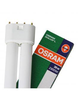 Osram Dulux L 36W 827 | Zeer Warm Wit - 4-Pin