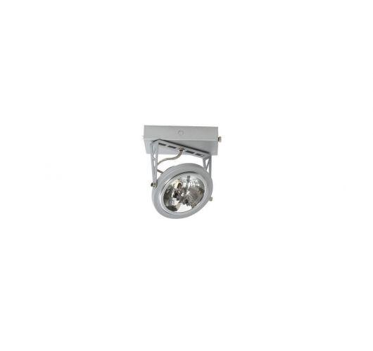 Lofar Plafond / Wand Spot Zilver (max 50w)